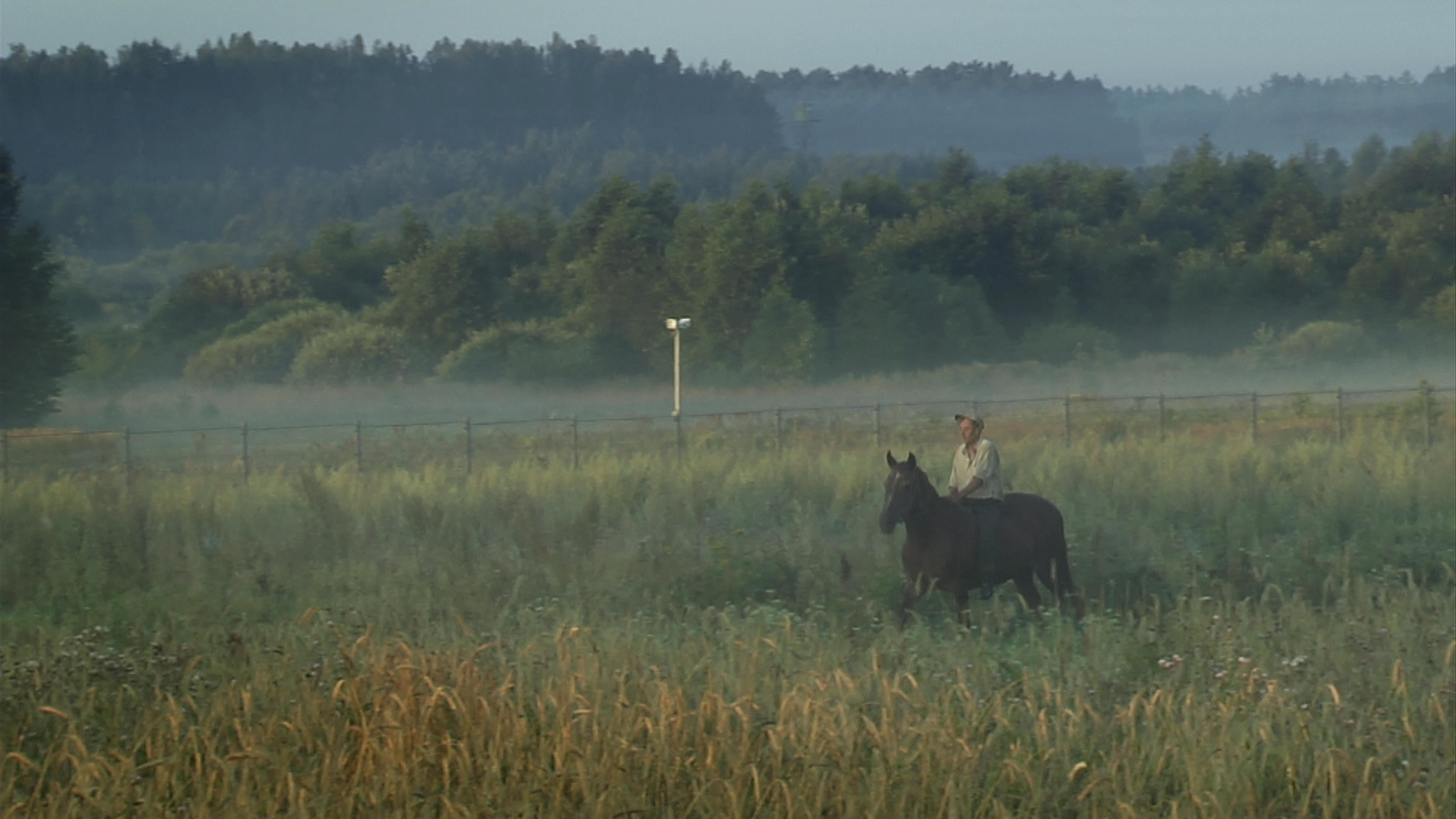 Aujourd'hui le village de Norviliskes ne compte plus que douze habitants. Il est situé sur la frontière qui sépare la Lituanie de la Biélorussie. Au delà de ce hameau, nous quittons l'Union Européenne.